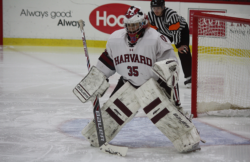 Molly Tissenbaum Harvard Hockey